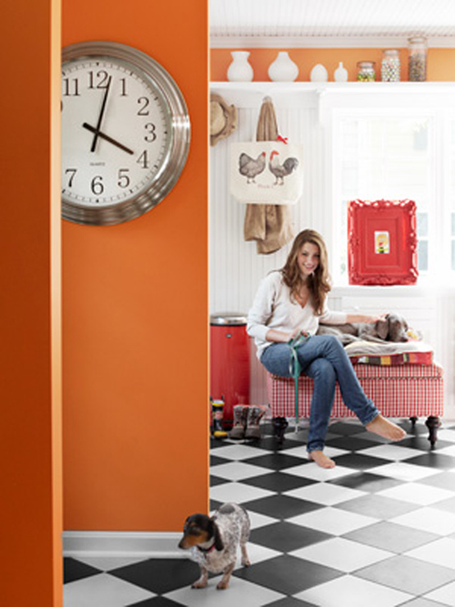 Bold Colors and high shelves work well in this small space decor idea