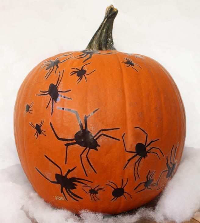spider_pumpkinblog