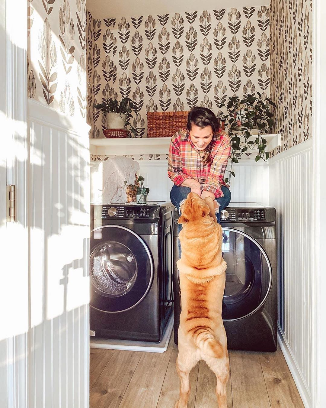 Budget Friendly Laundry Room Updates You Can Do In An Hour Poptalk